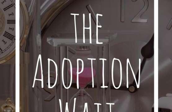 Surviving The Adoption Wait